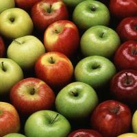 Apple growers to benefit from new nitrogen generators